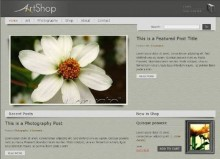 wordpress-ecommerce-theme-artshop-free-download-demo-test